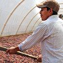 Einsatz für gerechten Welthandel wichtiger den je