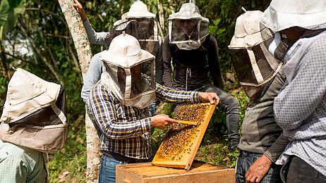 GEPA – The Fair Trade Company / R. Solórzano