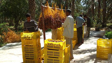 GEPA - The Fair Trade Company