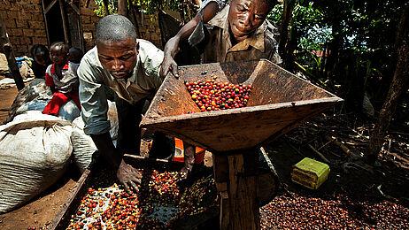 Fotos: Oxfam/Tim Dirven