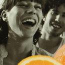 Erfrischung aus Brasilien: Merida Orange