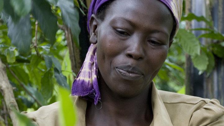 Foto: GEPA - The Fair Trade Company/ C.Nusch