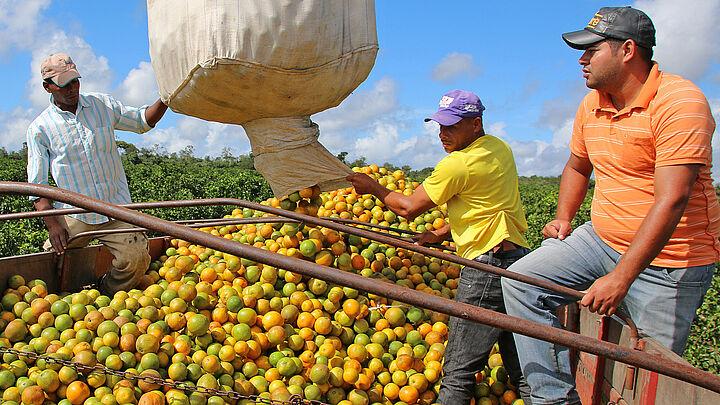Foto: GEPA - The Fair Trade Company/A. Welsing