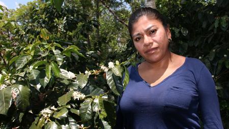 - Keine Klimagerechtigkeit ohne Fairen Handel