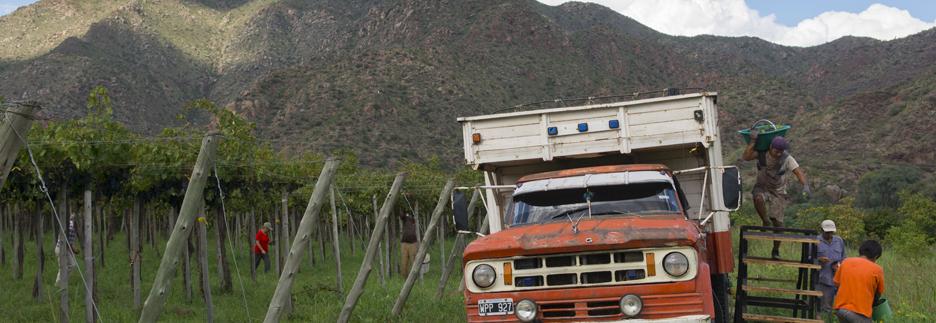 La-Riojana-Auto-Berge1 header