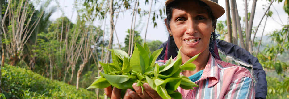 Foto: GEPA - The Fair Trade Company/A.Welsing