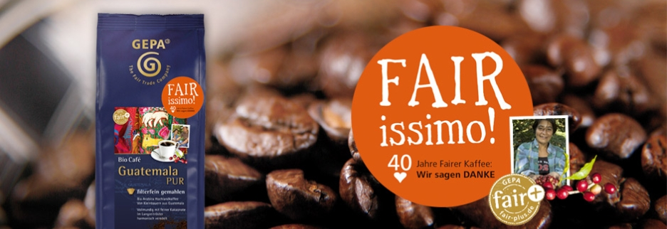 2013-FAIRissimo-Header