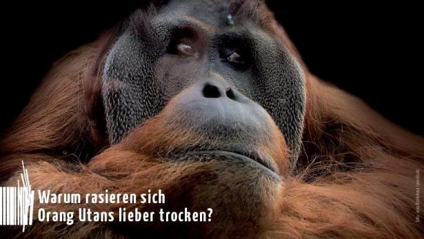 Foto: Jens Bredehorn/pixelio.de
