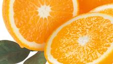Orangenscheiben Merida teas1x1 01