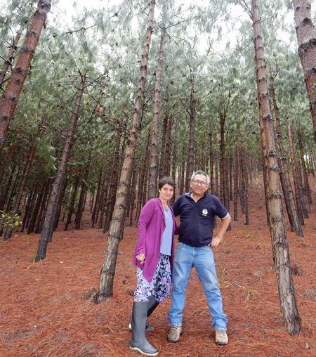 COP 25: Jetzt handeln für mehr Klimaschutz