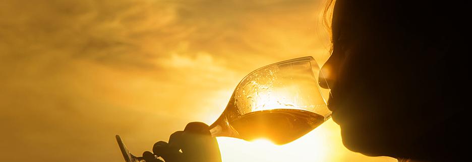 La-Riojana-Weinprobe-sonnenlicht header